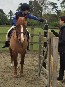 Jo and Forester practising for the Regional Show
