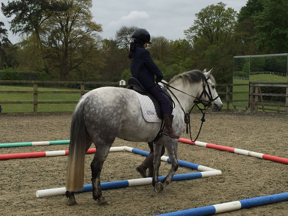 South Bucks RDA Newsletter May 2017